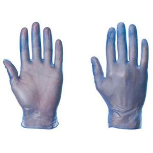 Powderfree Vinyl Gloves-0